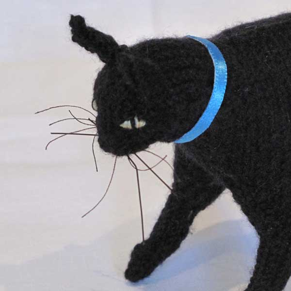 Black Cat – Best in Show